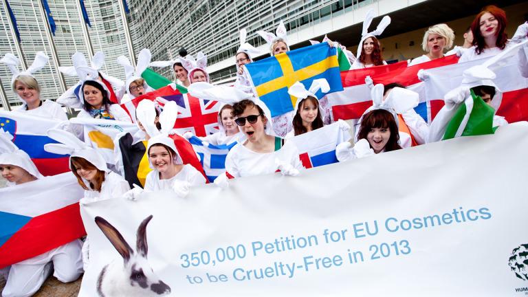 Fighting EU animal testing in Brussels