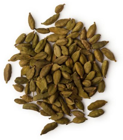 ショウズク種子油