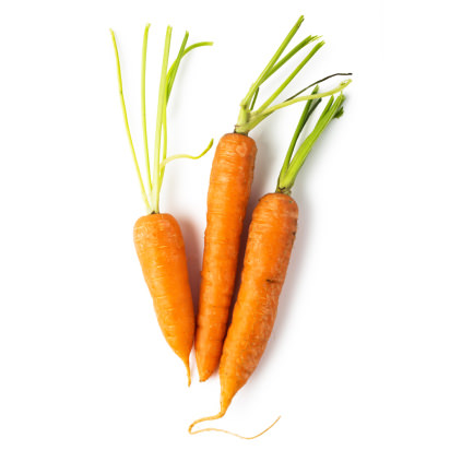 Fresh Carrot Infusion