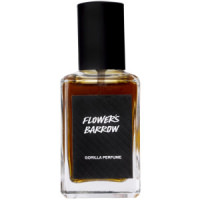 A bottle of Flower's Barrow Lush perfume. The perfume an orange/brown in colour and contained in a rectangle bottle featuring a black lid and label.