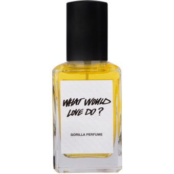 What would love do? 30ml Perfume bottle