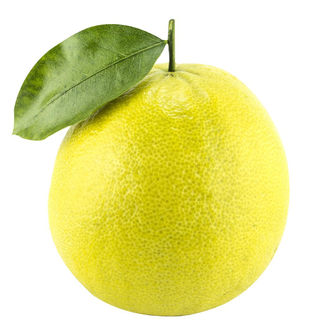 Frutto di Bergamotto (Citrus aurantium bergamia) con foglia