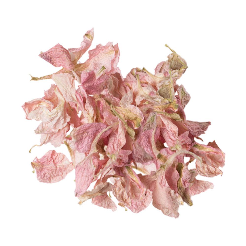 delphiunium-petals