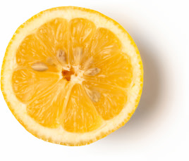 Fresh Organic Lemon Juice