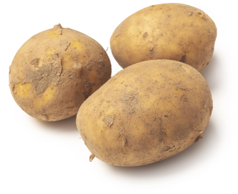 Pomme de terre - Ingrédient Lush