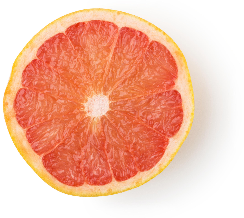 Fetta di pompelmo rosa (Citrus paradisi)