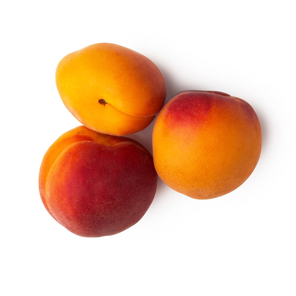 Albicocche fresche (Prunus Armeniaca)
