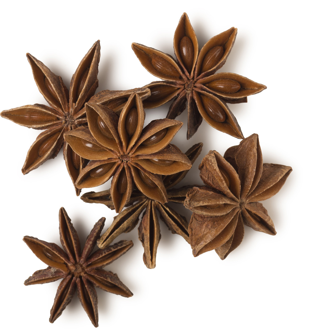 Star Anise Lush Fresh Handmade Cosmetics Uk