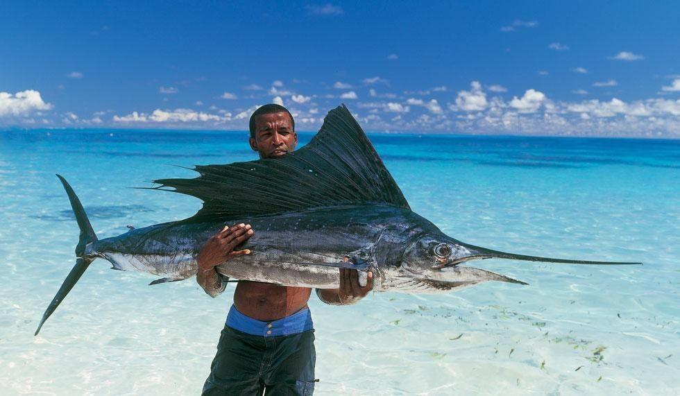 Seychelles - Seychelles