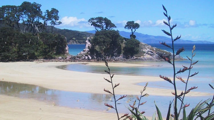 Great Barrier Island Accommodation for Two People The Innkeeper's Lodge & Currach Irish Pub Great Barrier Island