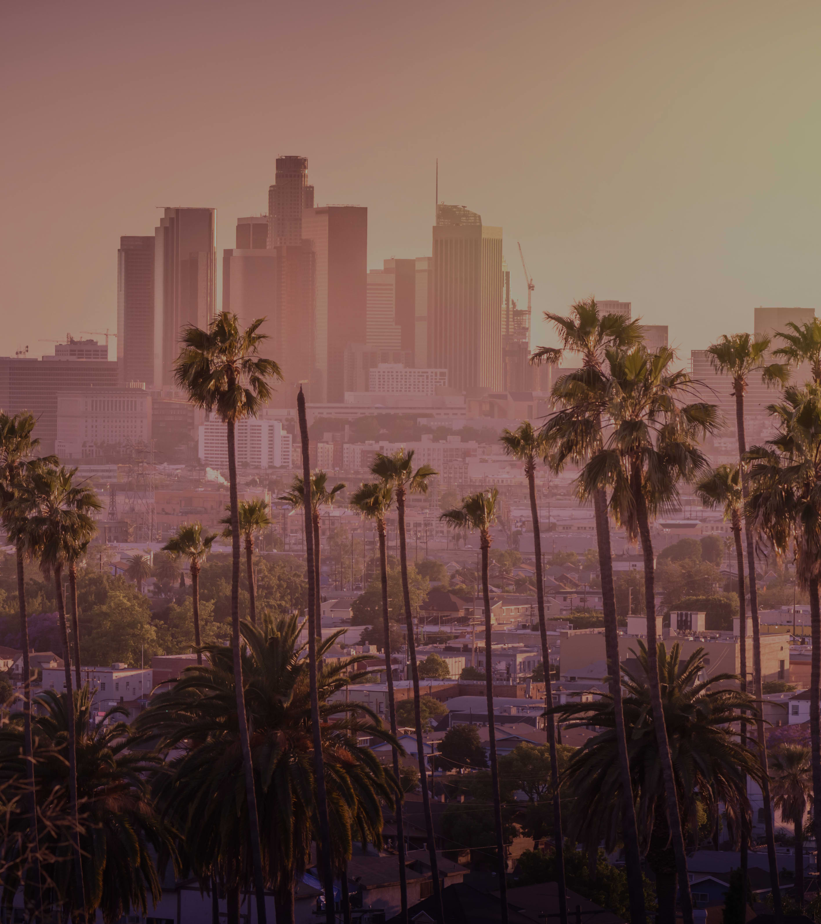 California Holiday Packages
