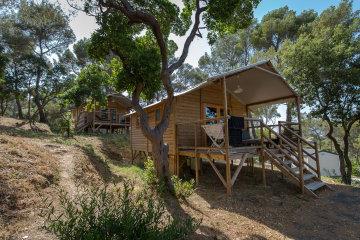 camping camp du domaine bormes les mimosas