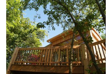 Tree house Premium 24m² (2 bedrooms) + terrace - CosyCamp