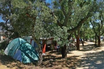 Pitch 3 : car + tent/caravan or camping-car + electricity 16A (+FRIGO+2VELOS+BBQ+1 TICKET WIFI ... - Des Albères