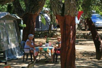 Pitch 2 : car + tent/caravan or camping-car + electricity 16A - Des Albères
