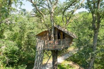Cabane dans les arbres Insolite - Les Alicourts Resort