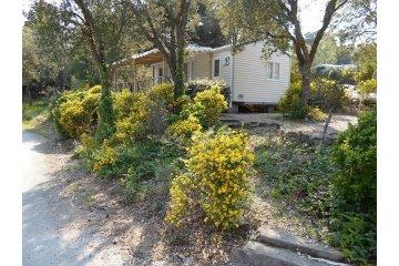 Cottage B - 2 chambres (sans climatisation, 29m²-30m²) - Domaine de la Bergerie