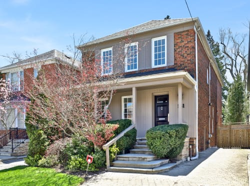 Cedarvale Absolute Show Stopper
