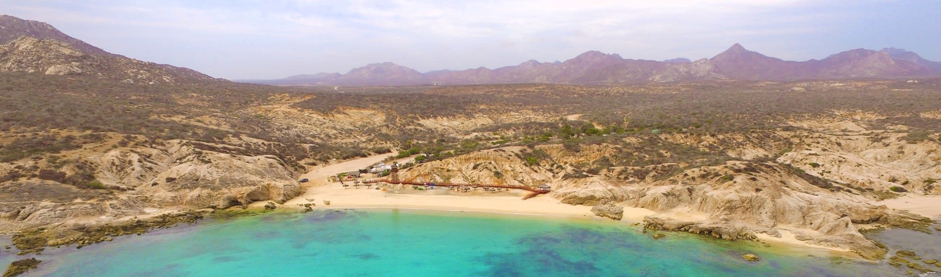 Cabo's Wild Side – Los Arbolitos Beach