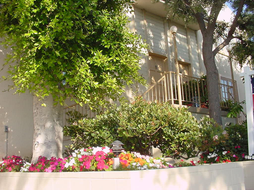 946 12th Street #2 photo