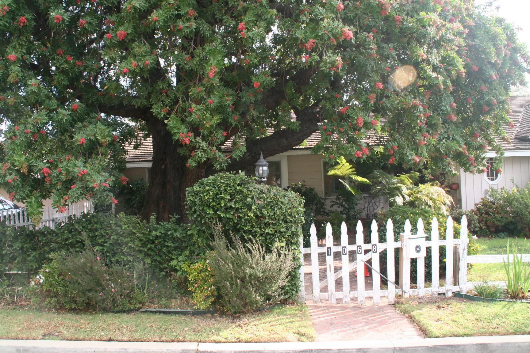 1068 Villa Grove Drive photo