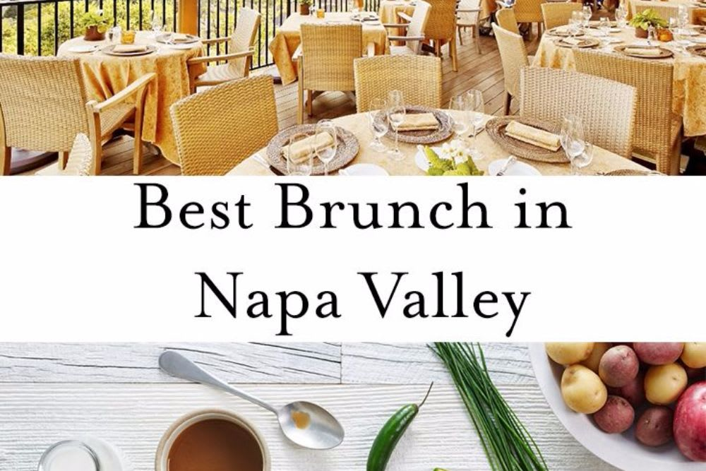 OUR FAVORITE RESTAURANTS IN THE SONOMA / NAPA VALLEY