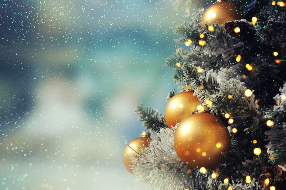 Can't Miss Holiday Events in Napa, Sonoma and the Surrounding Areas This Season!