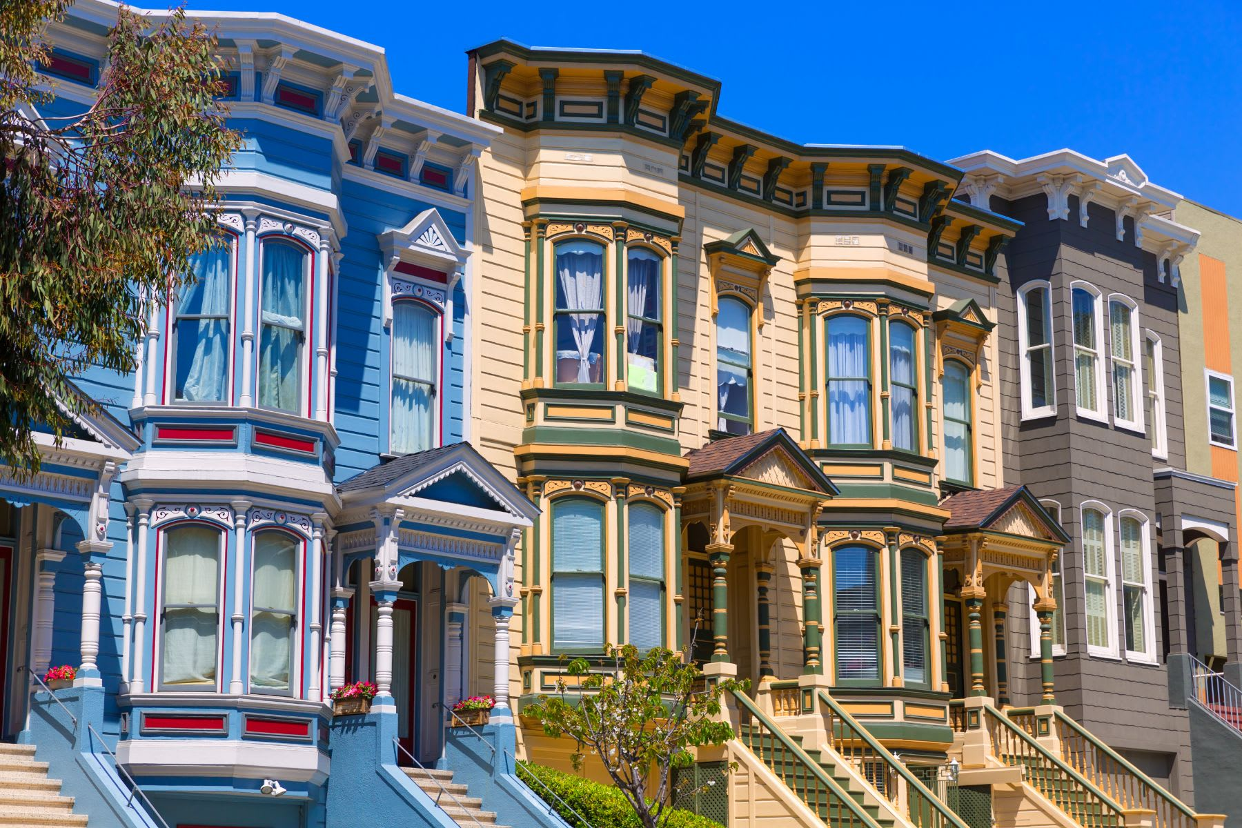 Pacific Heights picture