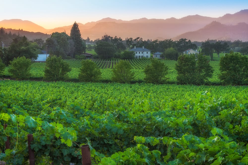 Rising Prices in St. Helena