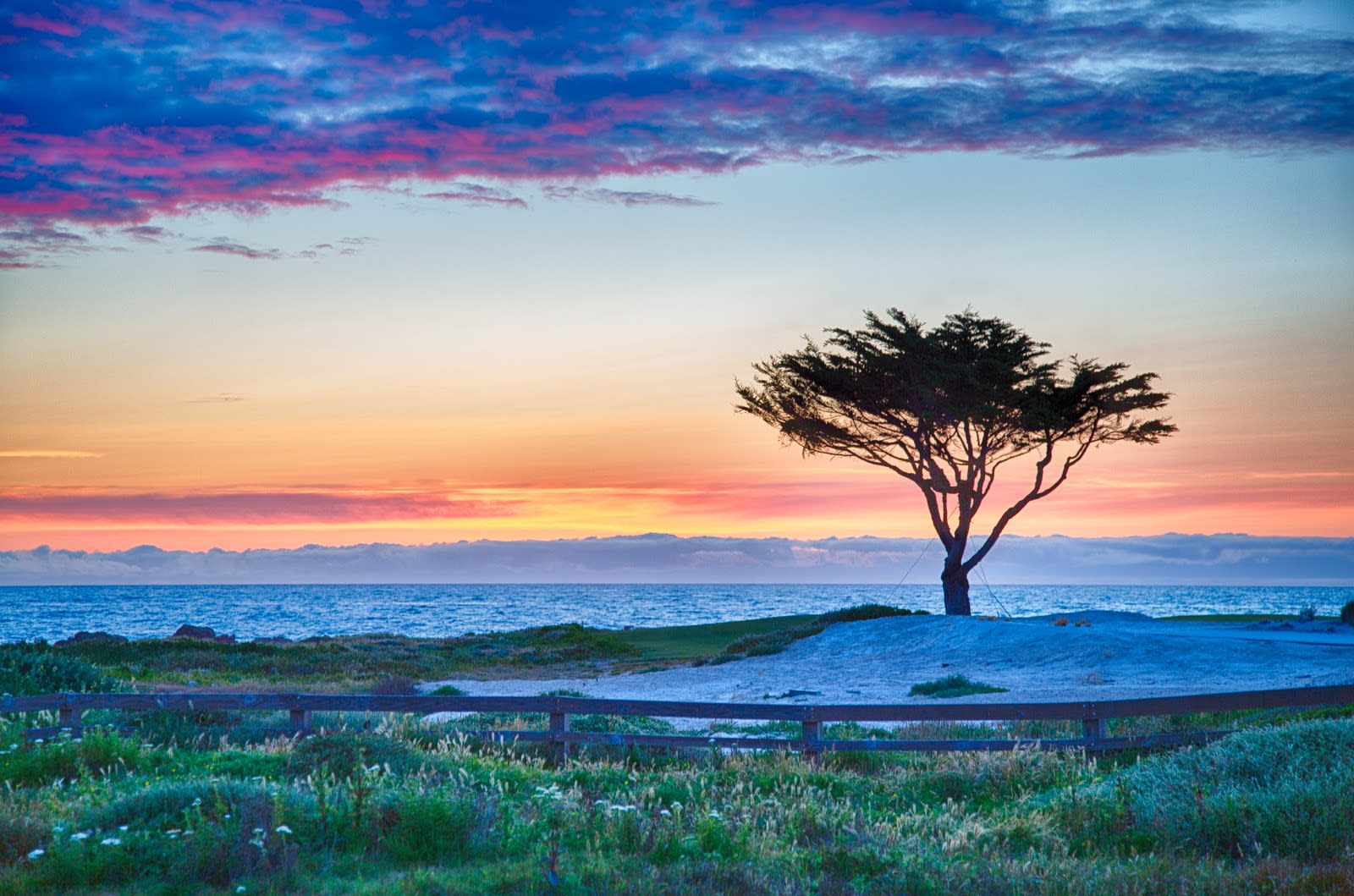 Top 5 Places to Walk on the Monterey Peninsula