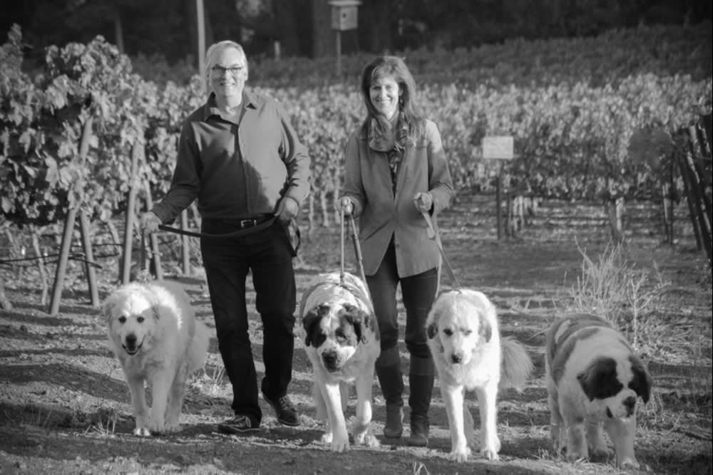 Napa Valley's Jameson Rescue Ranch Annual Holiday Animal Food Drive