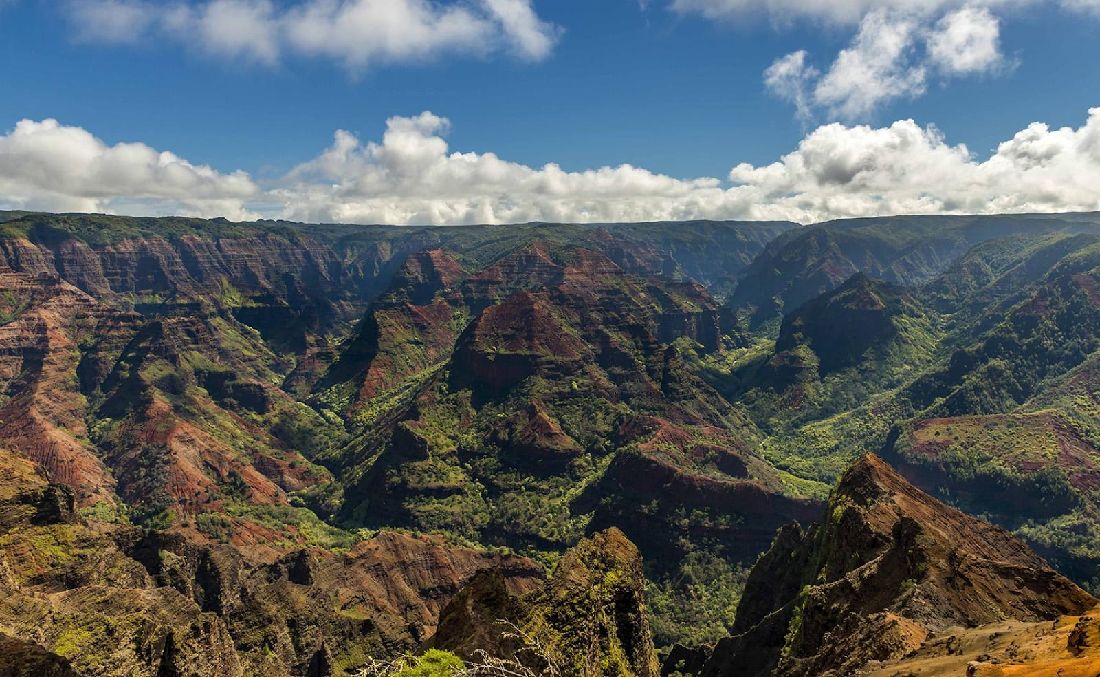 21 Things to Do and See on Kauai's South Shore This Spring