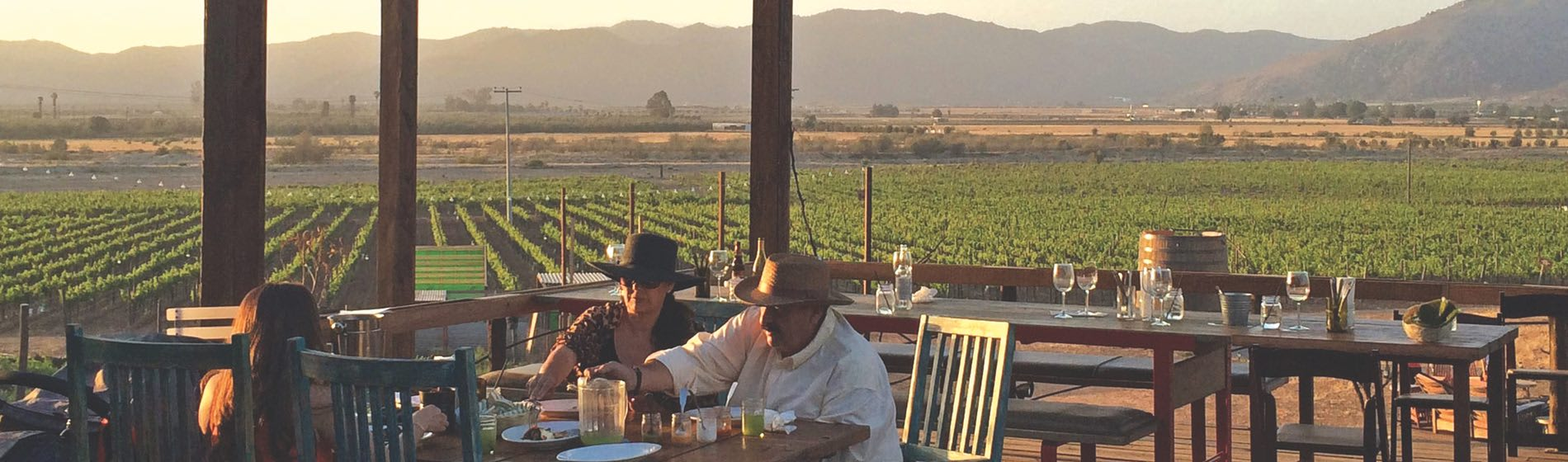 A Trip up to Baja Wine Country