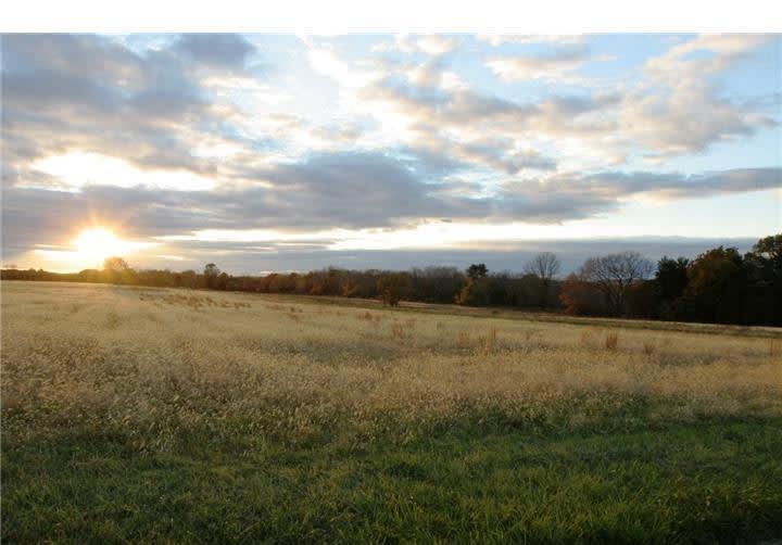 6 Tines Field Path photo