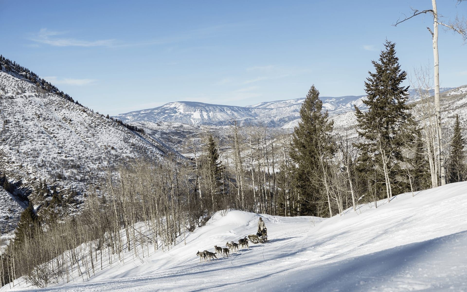 Where to Find the Best Views in Aspen