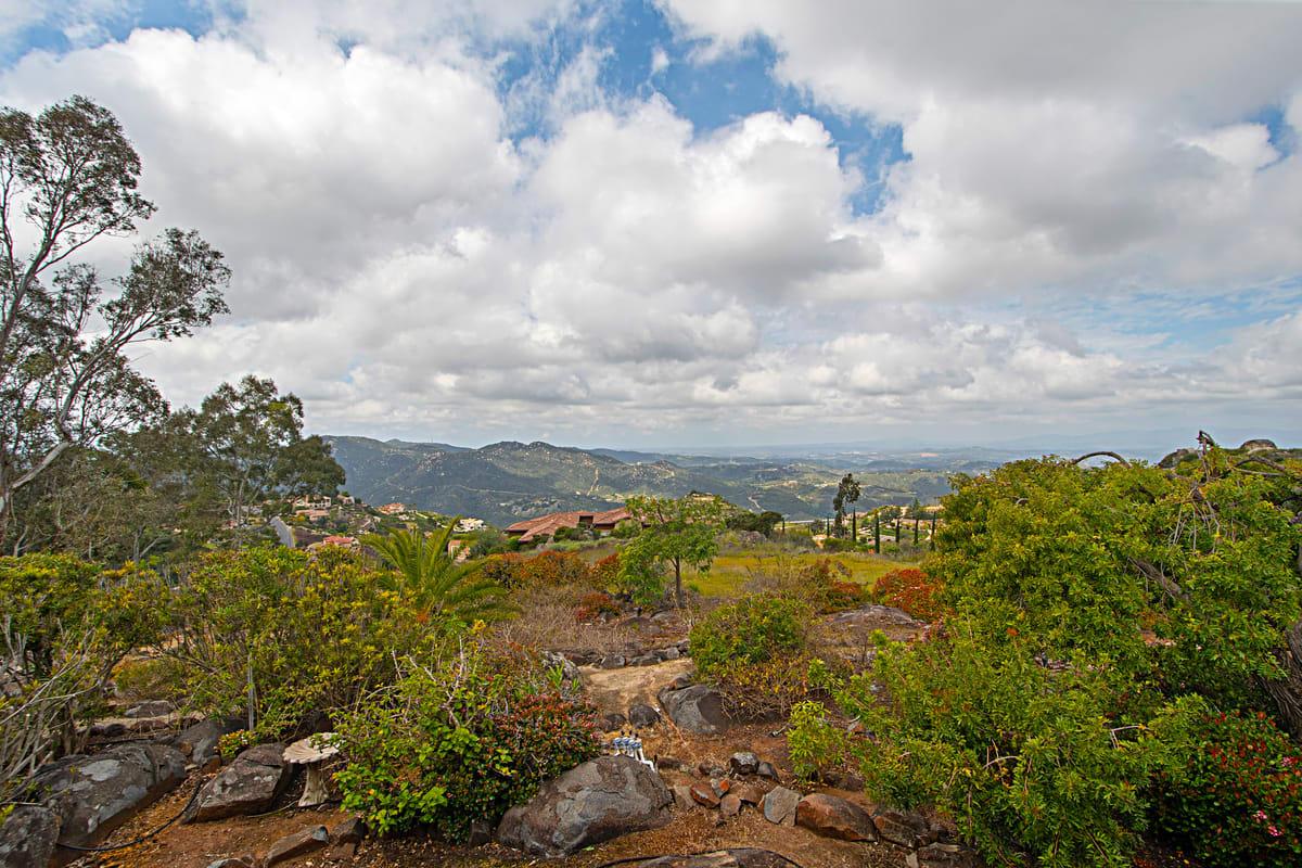 9614 Meadow Mesa Dr photo