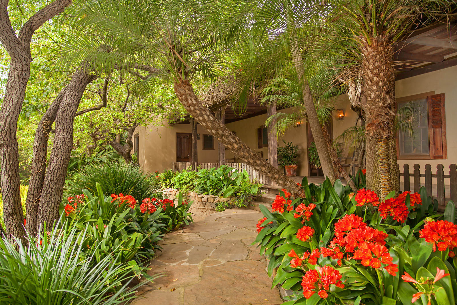 Mid-Century Adobe, Hollywood Roots