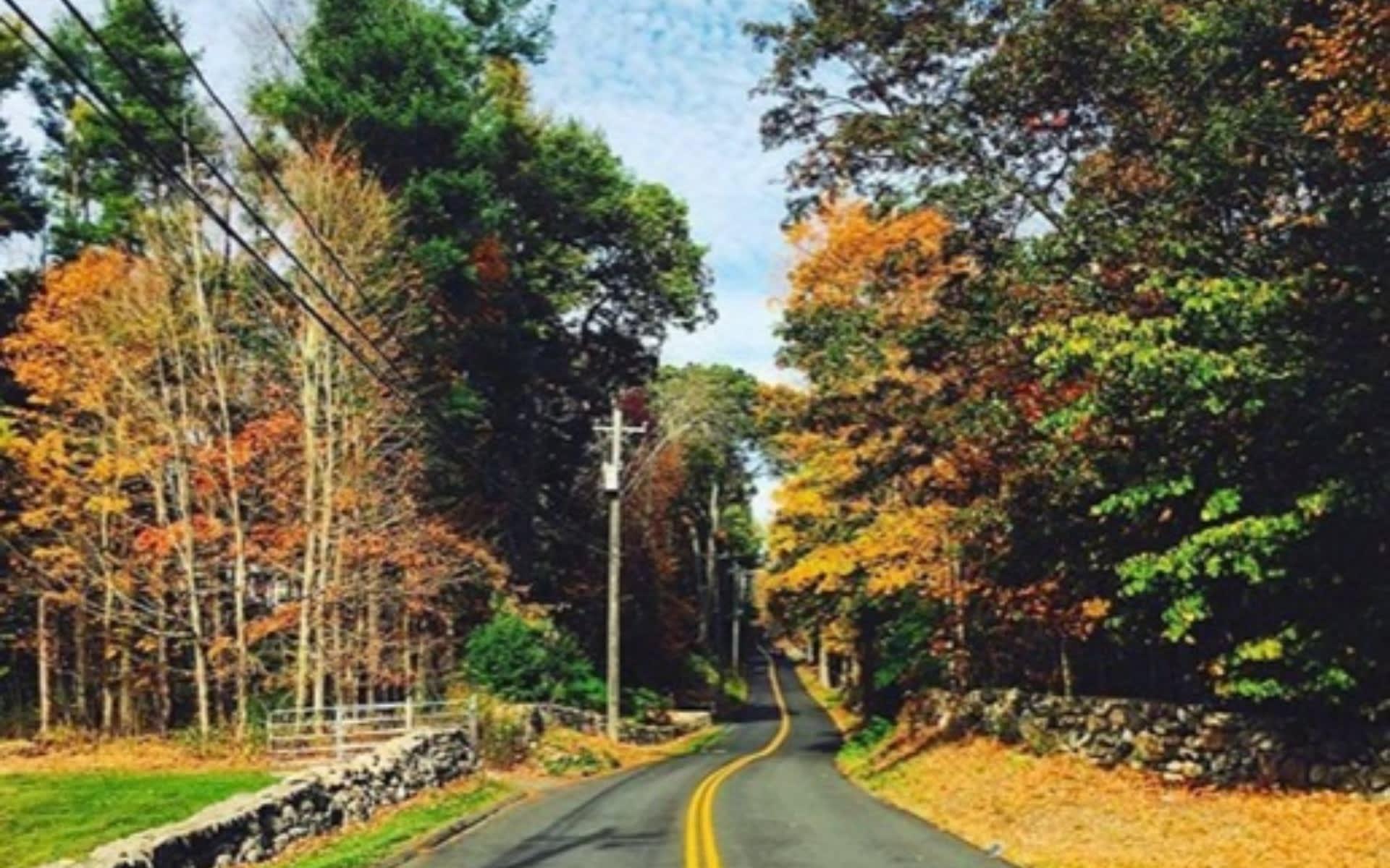 Pound Ridge picture