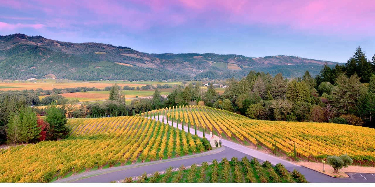 From Calistoga to St. Helena: Which Napa Valley Neighborhood is Right for You?