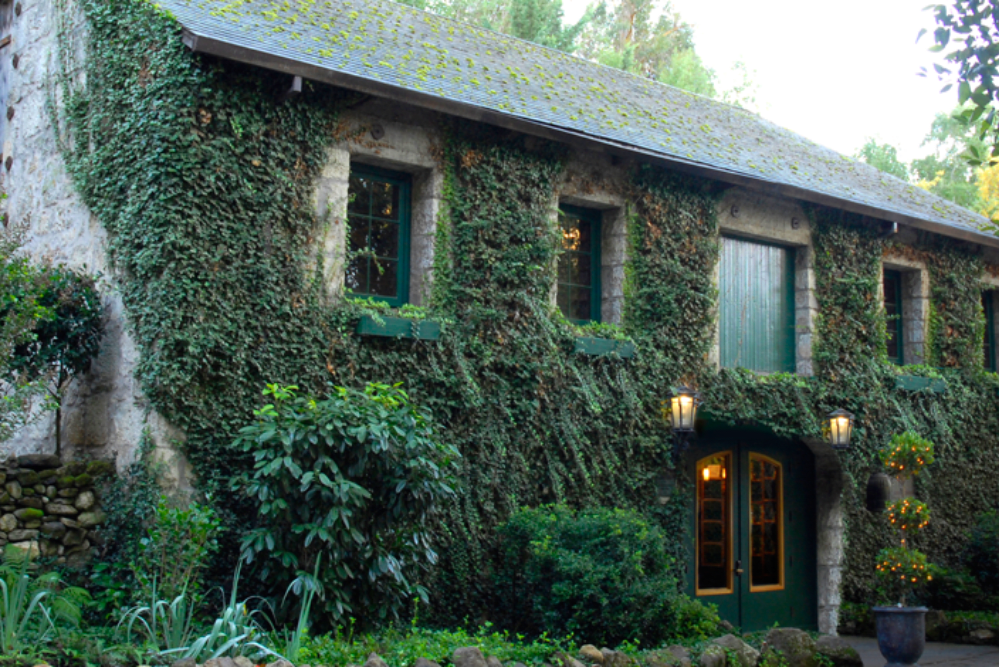 California's Oldest Winery: Sonoma's Beloved Buena Vista Winery