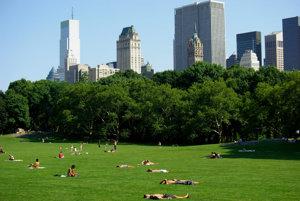The Best Picnic Spots in Manhattan