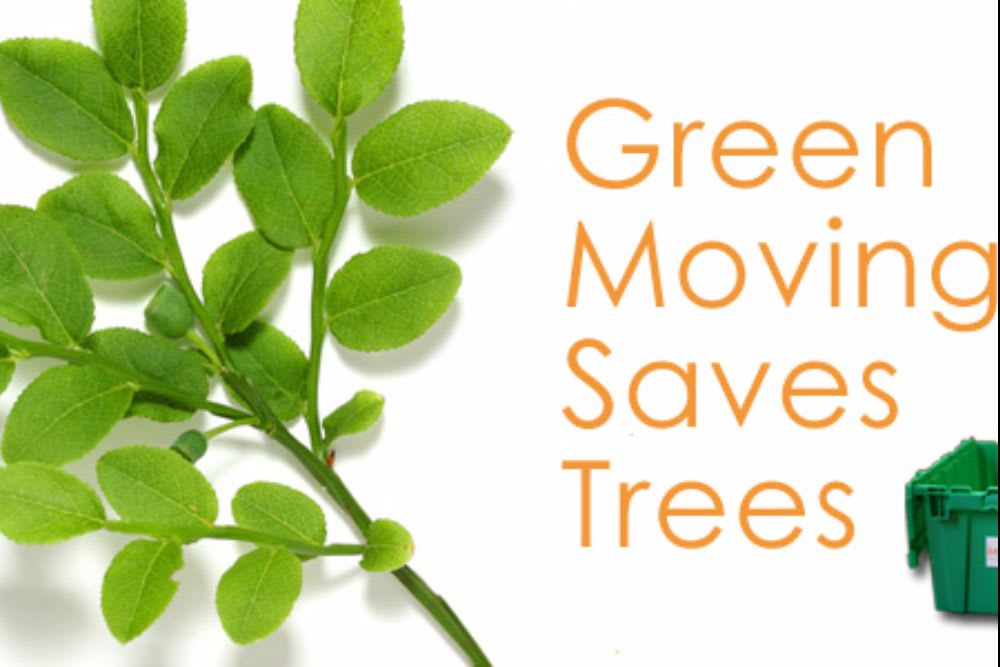 3 TIPS FOR GREEN MOVING