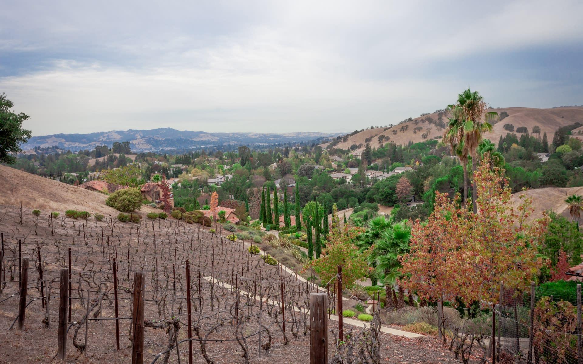 50 Camino Monte Sol