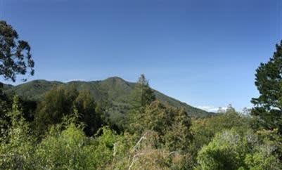 455 Panoramic Hwy photo