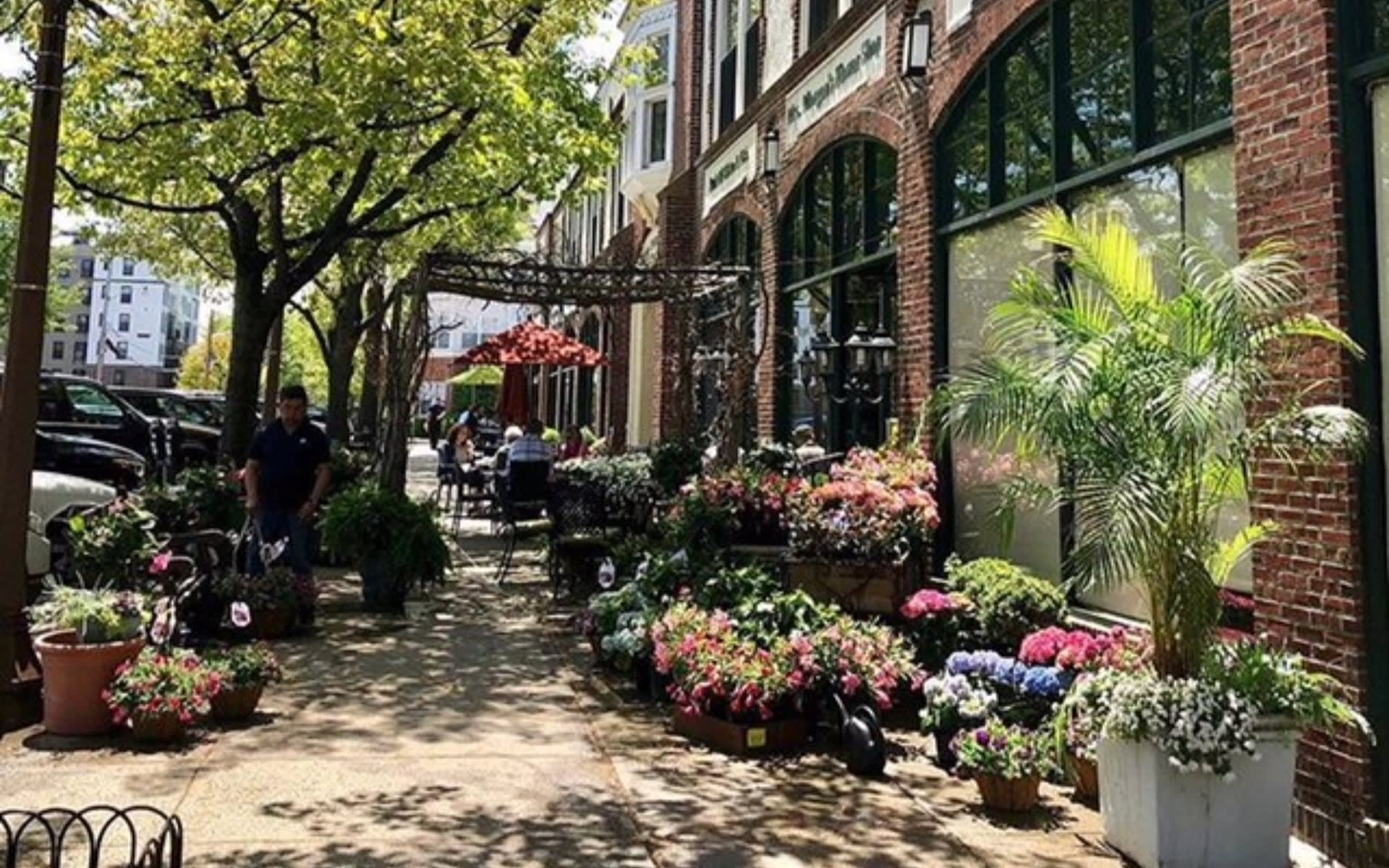 Bronxville picture