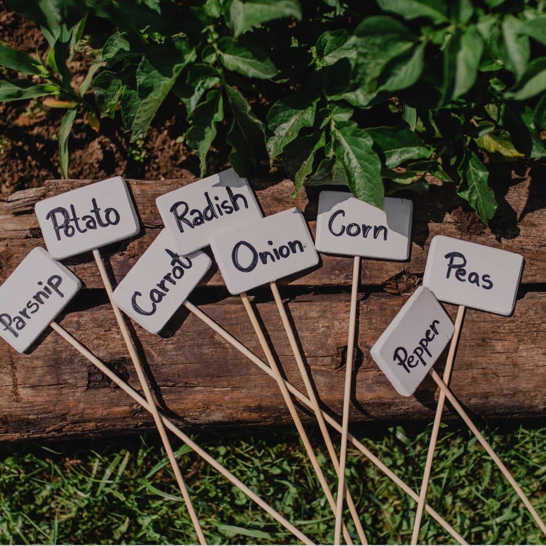 5 Tips for Home Garden
