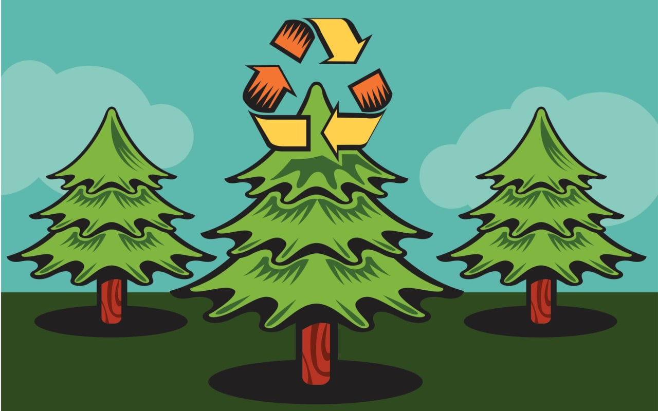 Christmas Tree Recycling In Austin & Dripping Springs [Updated 2020]