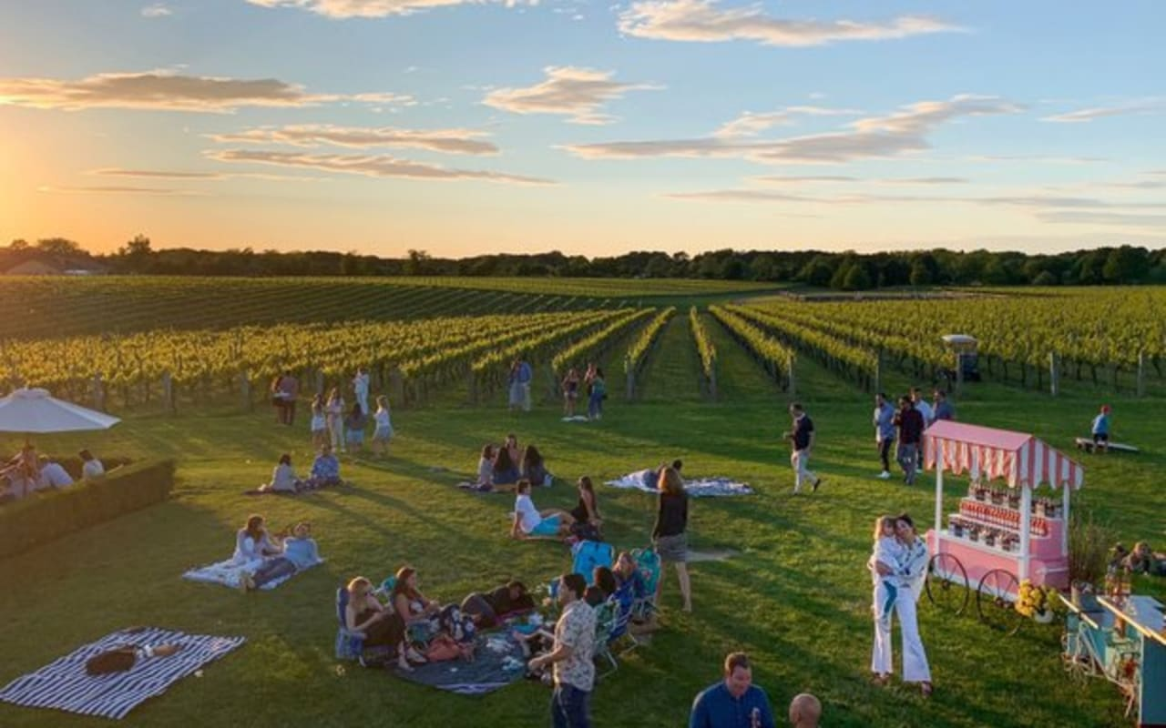 14 Best Ways to Relax in the Hamptons