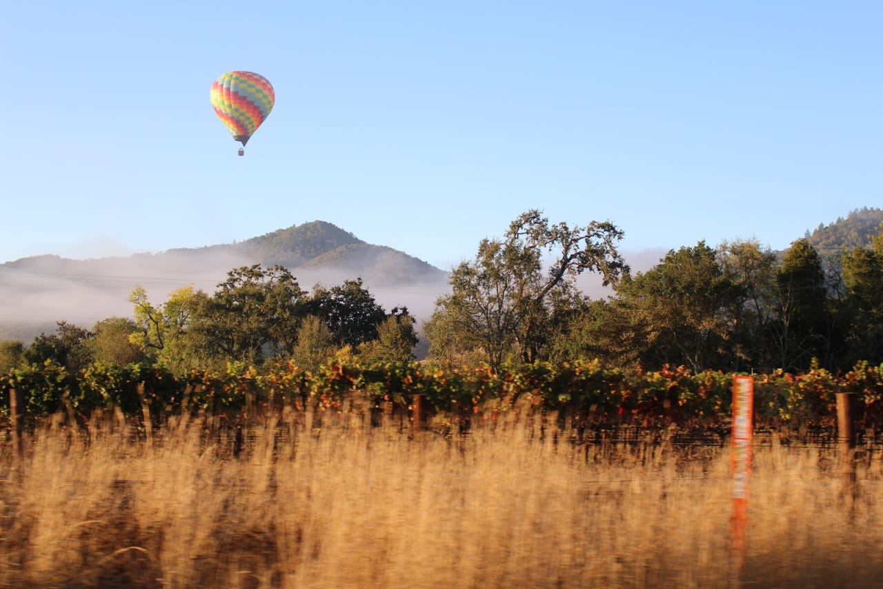 4 Things You Didn't Know About Napa Valley