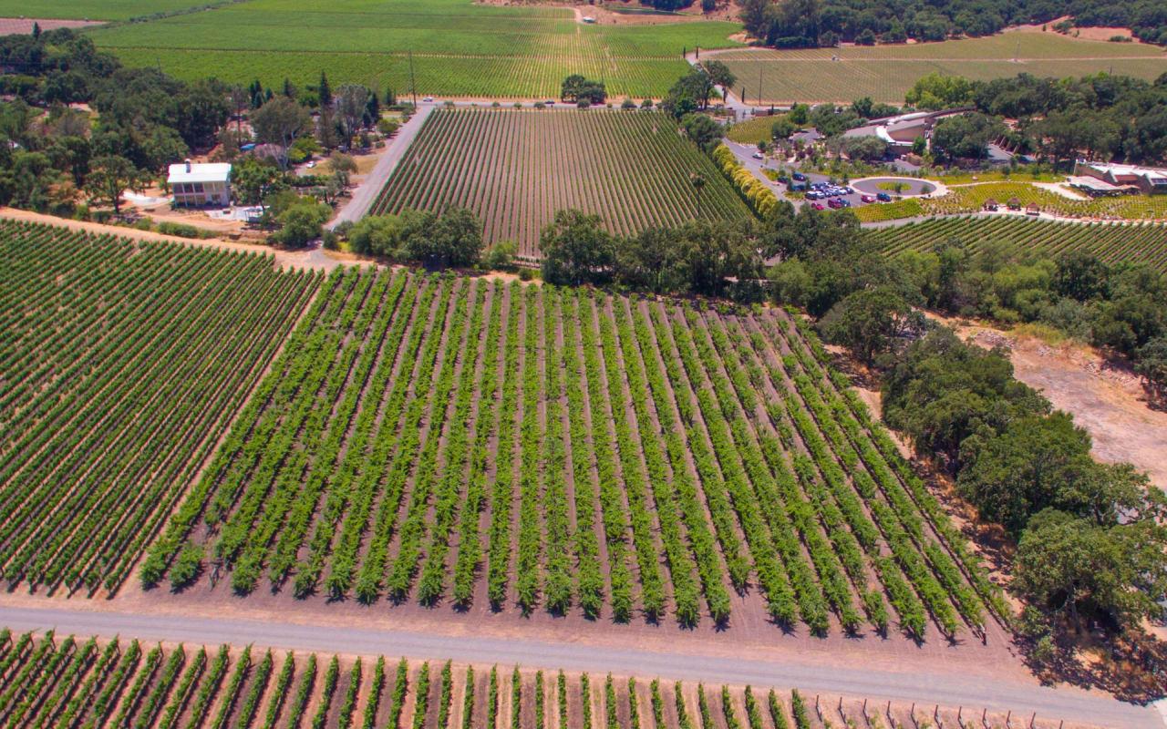 Sold   Stags Leap Parcel Vineyard Estate